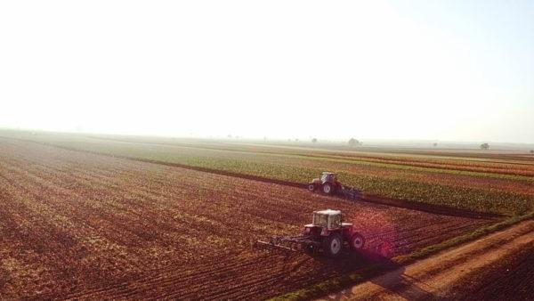 Land ohne Äcker – Wenn der Boden verschwindet