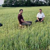 Reporter Timo Küntzle unter Interviewpartner im Getreidefeld