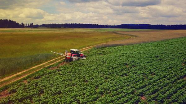 Gentechnik in der Bio-Landwirtschaft – demnächst in Österreich?