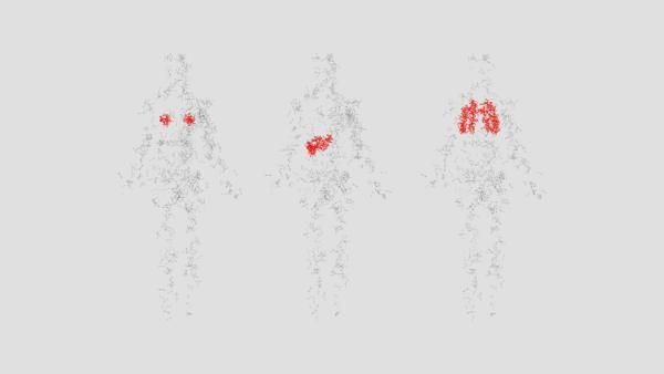 Wie viele Menschen wie Sie Krebs haben – und ihn überleben