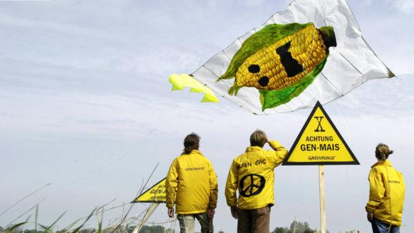 Wie Greenpeace & Co den Klima- und Artenschutz blockieren