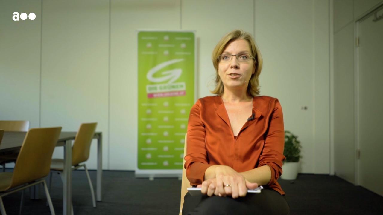 Grün gegen Grün? Die Unterschiede in der Bewertung der Atomkraft
